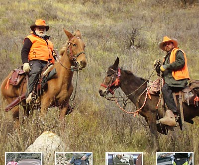 Colorado chaps for equestrian, hunting, construction, traffic control and motorcycle